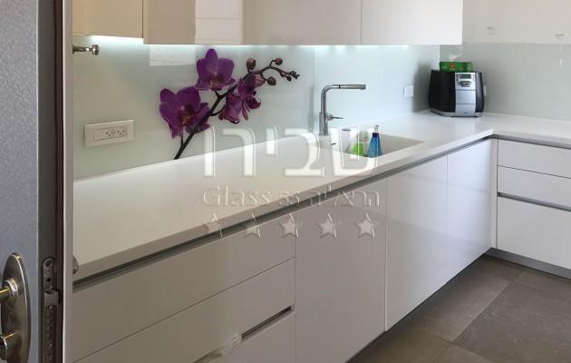 חיפוי זכוכית למטבח בשילוב הדפס פרח